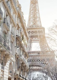 Paris ~The view from here. The Eiffel Tower in the 7th Arrondissement.