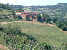 Visita ai caseifici della Robiola di Roccaverano