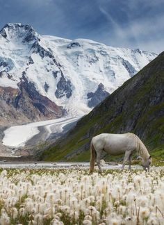 Valley Of Unicorns - Kyrgyzstan