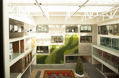 Airbnb; INSANE New S.F. Office #refinery29