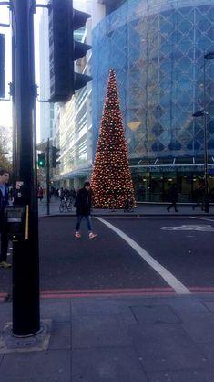 Tuesday 14th November 2017: love the Christmas tree outside of Warren Street station - finally feeling festive! 🎄