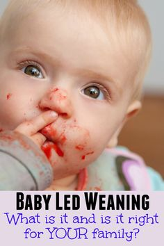 What is Baby Led Weaning and Is It Right For Your Family? - Crafts on Sea