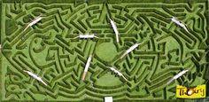 Labyrinthe | Zoo et parc de Thoiry, Yvelines (France)