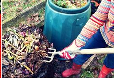 4 pasos para hacer el compost perfecto.