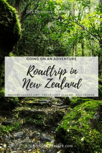 Going on an adventure - A roadtrip in New Zealand - Milford Sounds Highway - Franz Josef Glacier - Abel Tasman National Park _ DIYDenmark Travel Blog #travel #travelblogger #roadtrip Road Trip Packing, Road Trip Essentials, Road Trip Hacks, Road Trip Photography, Abel Tasman National Park, New Zealand Travel Guide, Denmark Travel, Road Trip Destinations, Australia Travel