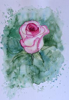 Original Aquarell Rose von ShtulbergArt auf Etsy