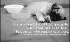 be a person who couldn't care more