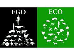 Hier möchte ich Alternativen anbieten ohne Missbrauch der Tiere, Sozialschwache + Tierretter unterstützen, alles ökologisch vertretbar