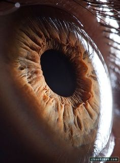 Hi-res Eye
