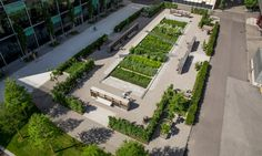 A medicinal herb garden takes root on the grounds of a global pharmaceutical company   Inhabitat - Green Design, Innovation, Architecture, Green Building