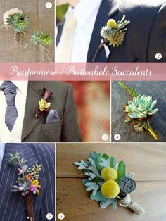 Succulent Boutonnierre and Buttonhold Inspiration Board