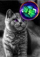 Cat with Bubble by Yankeestyle94