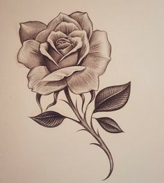 Early early morning rose inkdmonkey com losangeles westcoast mycrazylife rose southbay rosesketch pencil sketch chango… Rose Drawing Tattoo, Tattoo Sketches, Tattoo Drawings, Body Art Tattoos, Art Sketches, Drawing Of A Rose, Sketch Drawing, Drawing Art, Hand Tattoos
