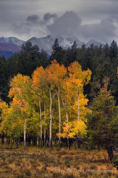 ~~A Stormy Autumn ~ Longs Peak, Rocky Mountain National Park, Colorado by John De Bord Photography~~