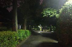 June 9, 2012  氷川神社 東中野 Hikawa jinzya TOKYO