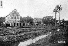 (1890-1910)