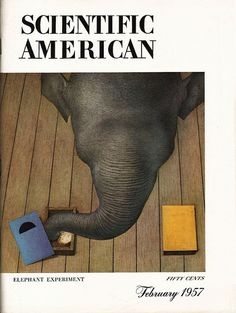 February 1957 Scientific American Cover by sandiv999, via Flickr Love Magazine, Book And Magazine, Magazine Covers, In The Zoo, Scientific American, Lp Cover, Fit S, Illustrations, Typography Design