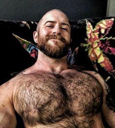 Bald With Beard, Fuzzy Wuzzy, Bear Men, Moustaches, Hairy Chest, Mans World, Hairy Men, Beard Styles, Facial Hair