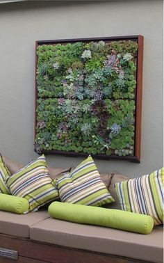 I love this beautiful Living Art! It's framed succulents and there area step by step detailed instruction here. My next DIY!