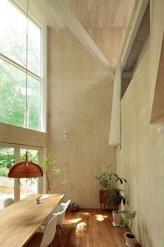 Airy room with plants