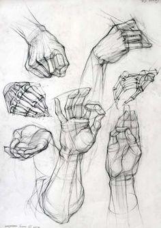 академический рисунок. кисти рук