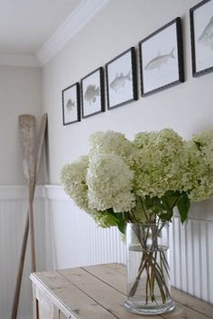 Hydrangea Flowers are Perfect for any home.>>> one of my favourite flowers!