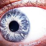 1 Odd Method Restores Your Vision (20/20). Try This