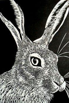 Hare - linocut print - Rowanne Anderson, U. Illustrations, Illustration Art, Linoprint, Stamp Printing, Scratchboard, Bunny Art, Guache, Wood Engraving, Tampons