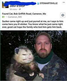 Funny shit and cute animals. Cute Funny Animals, Funny Cute, Animal Pictures, Funny Pictures, Found Cat, Opossum, Stupid Funny Memes, Funny Gifs, Cutest Animals