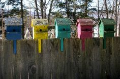 Birdhouses - Good for the Family & Great for the Birds | The Garden Glove