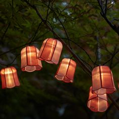 SOLVINDEN LED lighting chain with 12 lights - outdoor solar-powered, tulip pink - IKEA Ireland Solar String Lights, String Lights Outdoor, Tree House Plans, Deck Lighting, String Lighting, Luminous Flux, Pink Tulips, Led Lampe, Incandescent Bulbs