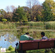 L'automne au Jardin Botanique de Montréal quelque part dans un jardin près d'un lac, une chaise ou un banc vous attend