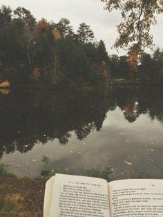 reading at the lake