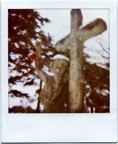 Snow Polaroid