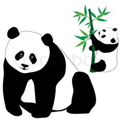 Stock vector of 'Set of cute panda bears with bamboo, isolated on white background'