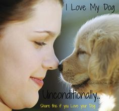 how i love my dog images - Google Search