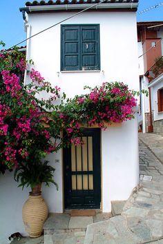 Encore! Life, Skopelos | by images of greece | via santoriniblog