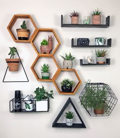 Room Ideas Bedroom, Diy Home Decor Bedroom, Living Room Decor, Cute Room Decor, Diy Wall Decor, House Plants Decor, Plant Decor, Aesthetic Bedroom, Diy Home Crafts