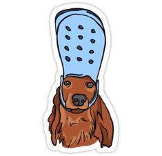 Crocs stickers featuring millions of original designs created by independent artists. Bubble Stickers, Cute Stickers, Crocs, Homemade Stickers, Aesthetic Stickers, Printable Stickers, Pet Gifts, Laptop Stickers, Sticker Design
