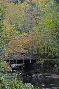Deep Creek, near Bryson City, in the Great Smoky Mountains National Park