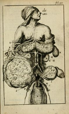 An illustration from an old Dutch anatomy book. I am extremely curious about this book in particular because it has amazing ill...