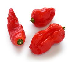 The Ghost Peppers.