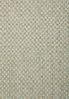 GOLDEN GATE, Seamist, T72870, Collection Grasscloth Resource 4 from Thibaut
