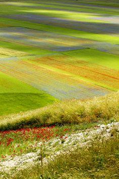 Tavolozza della Natura #colors