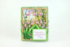 Tattered Lace Cards, Hollyhock, Die Cut Cards, Latest Images, Lily Of The Valley, Bliss, Gallery, Creative, Flowers