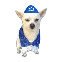 How adorable is this doggy TALLIS? The silky fabric is decorated with the Star of David and lots of twinkling stars on a blue background. White fringe is sewn on the bottom. It is the perfect go along Chihuahua Puppies, Chihuahua Clothes, Dog Pictures, Animal Pictures, Dog Umbrella, Dog Christmas Clothes, Dog Closet, Cute Dog Costumes, Large Dog Clothes