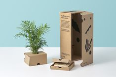 Developed for potted plant company The Sill, our sustainable packaging system uses fewer materials to provide a safer journey. Seed Packaging, Craft Packaging, Flower Packaging, Paper Bag Design, Plant Companies, Paper Pot, Plant Delivery, Grow Kit, Succulents Diy