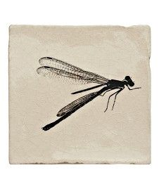 MH Cream Crackle Engraving - Dragonflies