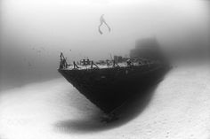 Visiting by Kurtarrigo Underwater Photography Underwater Photos, Underwater World, Underwater Photography, Photographic Film, Popular Photography, White Photography, Under The Sea, Sailing, Waves