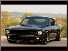 Ring Brothers Kona Mustang